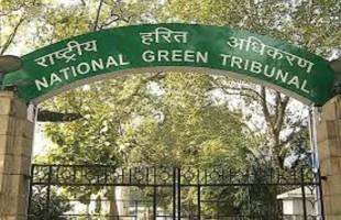 Chhattisgarh government slammed by NGT