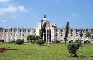 Odisha's revenue generation up 19%