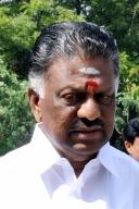 Tamil Nadu to study Cauvery Scheme