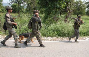 Eight militants killed, 12 security men injured in J&K