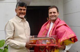 Rahul, Naidu move ahead to counter BJP in 2019