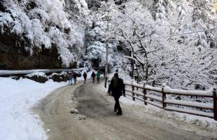 Kalpa, hills near Manali wrapped in white blanket