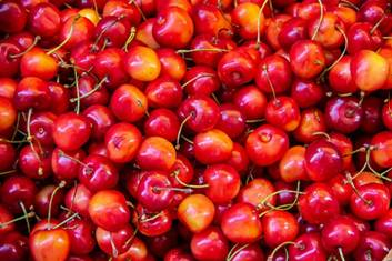 Mishri variety of cherries from Kashmir exported to Dubai